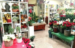 interno show room