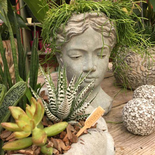 accessori giardino