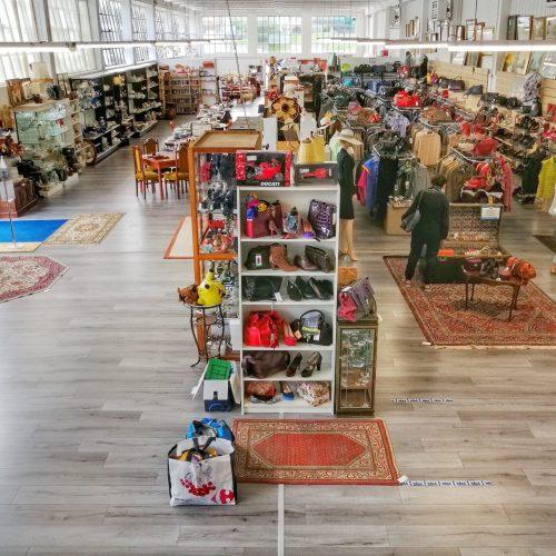 interno mercatopoli